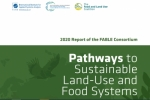 Informe México 2020 FABLE Consortium - Pathways to Sustainable Land-Use and Food Systems